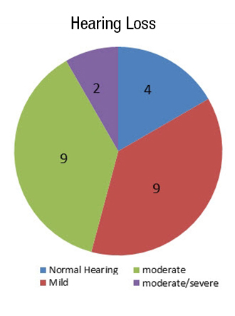 Figure 1. Hearing loss distribution for the 24 participants.